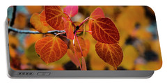 Aspen Aflame Portable Battery Charger