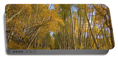 Portable Battery Charger featuring the photograph Aspen Alley by Steve Stuller