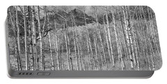 Portable Battery Charger featuring the photograph Aspen Ambience Monochrome by Eric Glaser