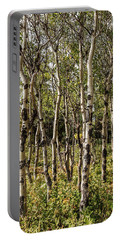Portable Battery Charger featuring the photograph Aspen Delight At Glacier by Lon Dittrick