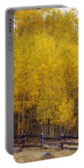 Aspen Fall 2 Portable Battery Charger