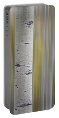 Aspen Portable Battery Charger by Gary Lengyel