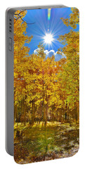 Portable Battery Charger featuring the photograph Aspen Grove Aglow by Diane Alexander