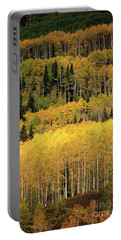 Aspen Groves Portable Battery Charger