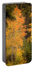 Aspen Portable Battery Charger
