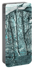Aspen Reflection Portable Battery Charger