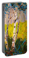 Aspen Spring Portable Battery Charger