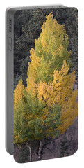 Aspen Tree Fall Colors Co Portable Battery Charger
