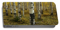 Aspens - 0245 Portable Battery Charger