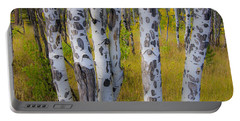 Portable Battery Charger featuring the photograph Aspens by Gary Lengyel