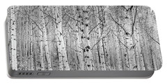 Aspens In High Key Portable Battery Charger