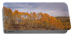 Aspens In Utah Portable Battery Charger