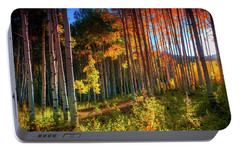 Portable Battery Charger featuring the photograph Aspens Of The West Elk Mountains by John De Bord