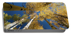 Portable Battery Charger featuring the photograph Aspens Up by Steve Stuller