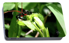 Portable Battery Charger featuring the photograph Assassin Bug by Meta Gatschenberger