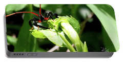 Assassin Bug Portable Battery Charger by Meta Gatschenberger