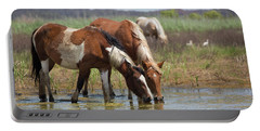 Assateague Ponies Tale Drink Portable Battery Charger