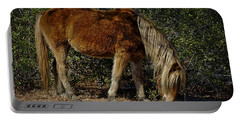 Assateague Wild Pony Portable Battery Charger