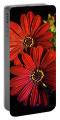 Aster Coming Out Of The Dark Portable Battery Charger
