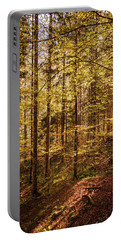 Portable Battery Charger featuring the photograph Ataraxia by Geoff Smith