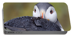 Atlantic Puffin With Rain Drops Portable Battery Charger