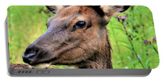 Attentive Yearling Portable Battery Charger