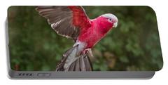 Australian Galah Parrot In Flight Portable Battery Charger