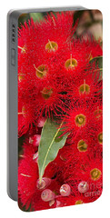 Australian Red Eucalyptus Flowers Portable Battery Charger