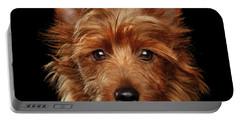 Australian Terrier Portable Battery Charger by Sergey Taran
