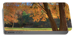 Portable Battery Charger featuring the photograph Autumn At Lykens Glen by Lori Deiter