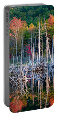 Autumn At Moosehead Bog Portable Battery Charger