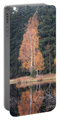 Autumn Birch By The Lake Portable Battery Charger by Michal Boubin