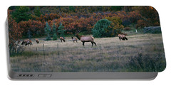Autumn Bull Elk Portable Battery Charger by Jason Coward