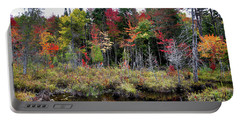 Portable Battery Charger featuring the photograph Autumn Color In The Adirondacks by David Patterson