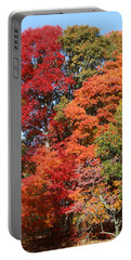 Autumn Color Spray Portable Battery Charger