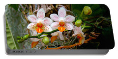 Portable Battery Charger featuring the photograph Autumn Colored Orchids by Sue Melvin