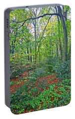 Portable Battery Charger featuring the photograph Autumn Colours by Anne Kotan