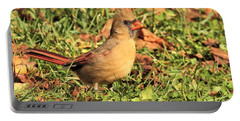 Portable Battery Charger featuring the photograph Autumn by Debbie Stahre