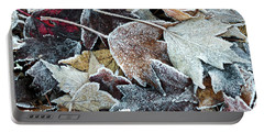 Portable Battery Charger featuring the photograph Autumn Ends, Winter Begins 1 by Linda Lees