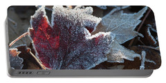 Portable Battery Charger featuring the photograph Autumn Ends, Winter Begins 2 by Linda Lees