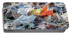 Portable Battery Charger featuring the photograph Autumn Ends, Winter Begins 3 by Linda Lees
