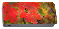 Portable Battery Charger featuring the photograph Autumn Flash by Bryan Carter