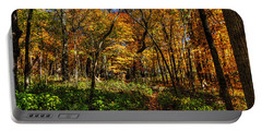 Autumn Forest Path At Johnson's Mound Portable Battery Charger
