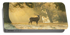 Portable Battery Charger featuring the photograph Autumn Frost by Scott Carruthers