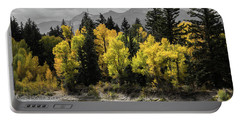 Portable Battery Charger featuring the photograph Autumn Glow by Colleen Coccia