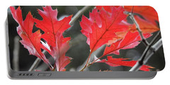 Portable Battery Charger featuring the photograph Autumn Leaves by Peggy Hughes