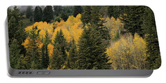 Autumn Mist, Owyhee Mountains Portable Battery Charger