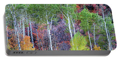 Portable Battery Charger featuring the photograph Autumn Mix by Bryan Carter