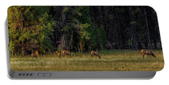 Portable Battery Charger featuring the photograph Autumn Morning In The Meadow by Yeates Photography