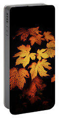 Autumn Photo Portable Battery Charger